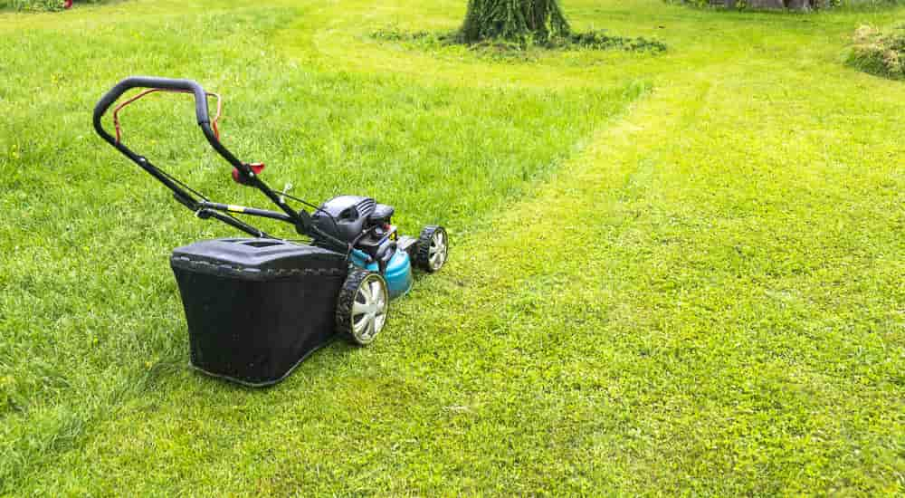 best cordless lawn mower small yard