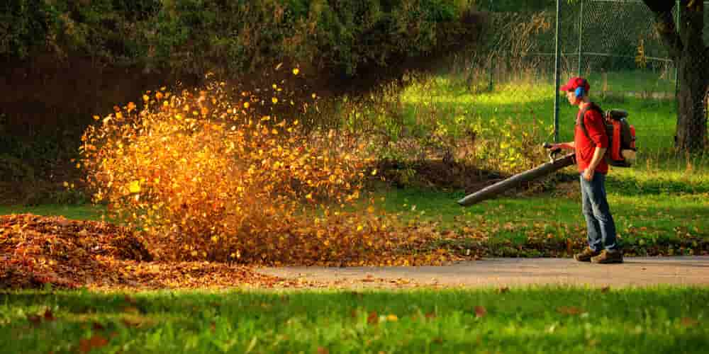 battery charged leaf blower
