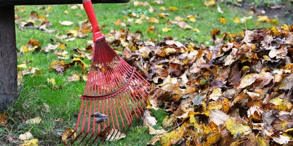 best rated cordless leaf blower