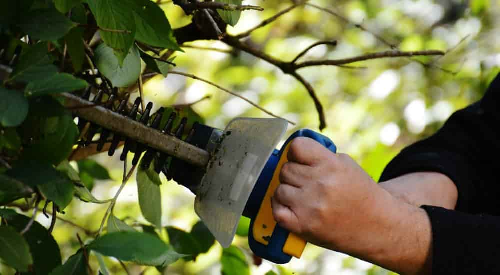 hedge trimmer must tool