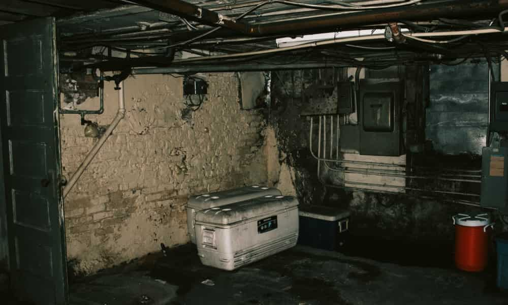 Crawl Space Encapsulation Pros and Cons